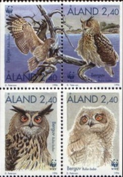 [Birds - Owls, type ]