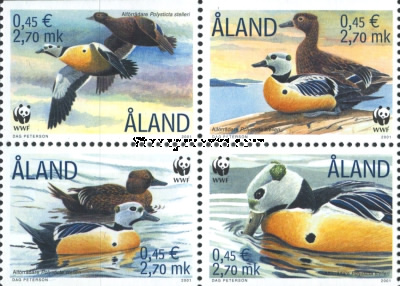 [WWF - Ducks, type ]