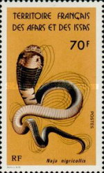 [Snakes, type CY]