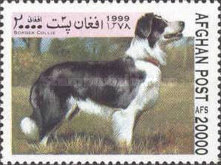 [Dogs, type ASH]