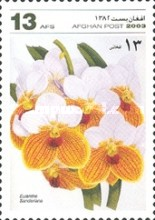 [Flowers - Orchids, type AWC]