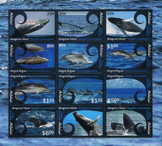 [Marine Life - Whales & Dolphins, type ]
