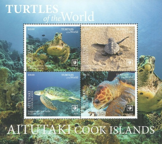 [Marine Life - Turtles of the World - with White Frame, type ]