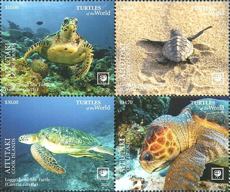 [Marine Life - Turtles of the World - without White Frame, type ]
