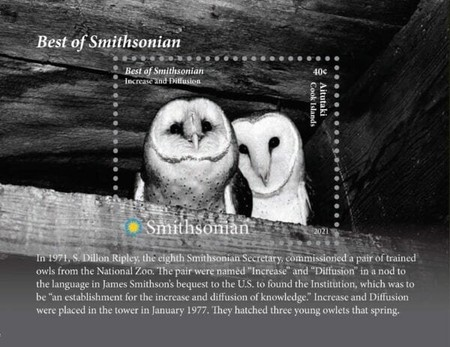 [The Best of the Smithsonian - Owls, type ]