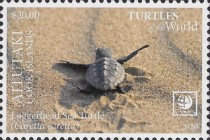 [Marine Life - Turtles of the World, type AAT]