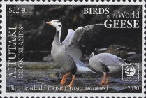 [Birds of the World - Geese, type ABC]