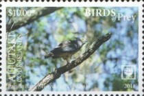 [Birds of Prey - White Frame, Typ ZY]