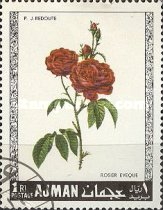 [Roses, type OH]