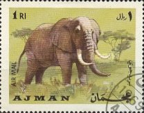 [Airmail - Animals, type OO]