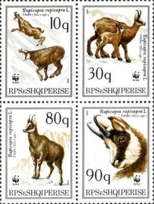 [World Wildlife Fund - Chamois Goats, type ]