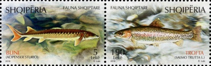 [Albanian Fauna - Fishes, type ]