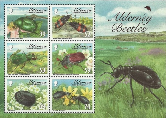 [Fauna - Alderney Beetles, type ]