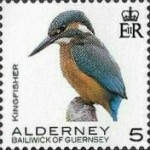 [Definitives - Alderney Birds, type YM]