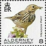 [Definitives - Alderney Birds, type YP]