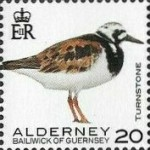 [Definitives - Alderney Birds, type YS]