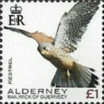 [Definitives - Alderney Birds, type YV]