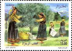 [Algerian Olive Oil Production, Typ AYC]