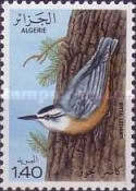 [Kabylie Nuthatch, Typ RE]