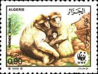 [Endangered Animals - Barbary Ape, Typ ZX]