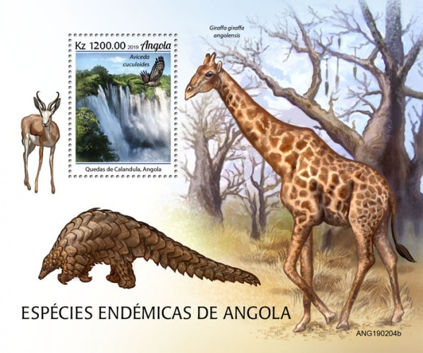 [Fauna - Endemic Species of Angola, type ]
