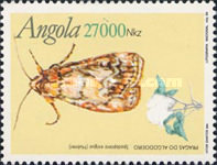 [Insects, Typ AAG]