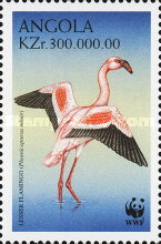 [Endangered Species - The Lesser Flamingo, Phoenicopterus minor, Typ ANH]