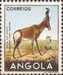 [Angolan Fauna, Typ DO]