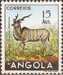 [Angolan Fauna, Typ DS]