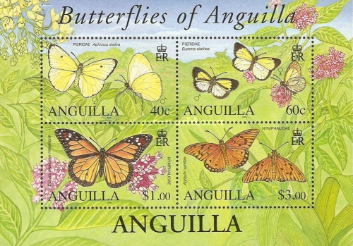[Butterflies of Anguilla, type ]
