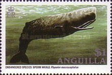 [Endangered Animals - Whales, Typ AKS]