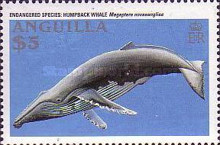 [Endangered Animals - Whales, Typ AKT]