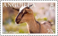 [Goats of Anguilla, Typ AUH]