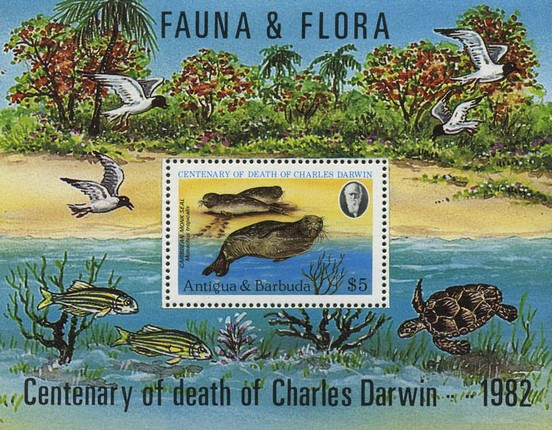 [The 100th Anniversary of the Death of Charles Darwin, type ]