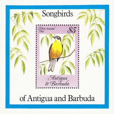 [Songbirds, type ]
