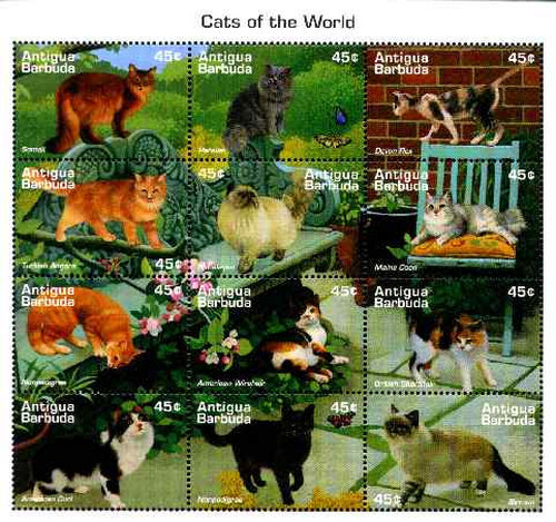 [Cats of the World, type ]