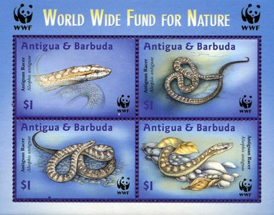 [World Wildlife Fund - Antigua Racer, type ]