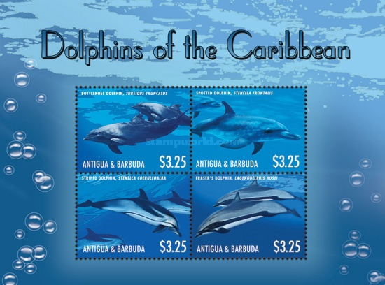 [Marine Life - Dolphins of the Caribbean, type ]