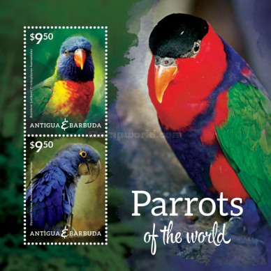 [Parrots of the World, type ]