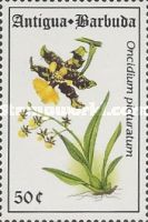 [Orchids, type AWQ]
