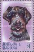 [Dogs, type COO]