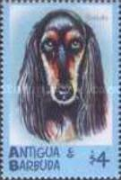 [Dogs, type COQ]