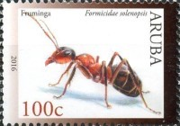 [Insects, Typ AIJ]