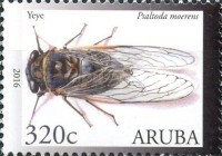 [Insects, Typ AIO]