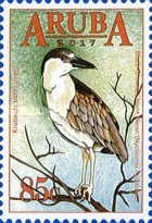 [Birds of Aruba, type AJV]