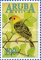 [Birds of Aruba, type AJX]
