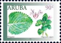 [Medicinal Plants, type AMR]