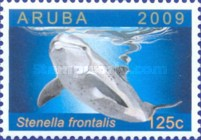 [Dolphins Around Aruba, Typ QF]