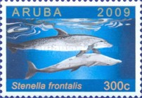 [Dolphins Around Aruba, Typ QH]