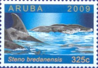 [Dolphins Around Aruba, Typ QI]